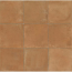 COTTO NATURE 14X14 GLOSS FINISH TILES IN SIENA CARAMEL